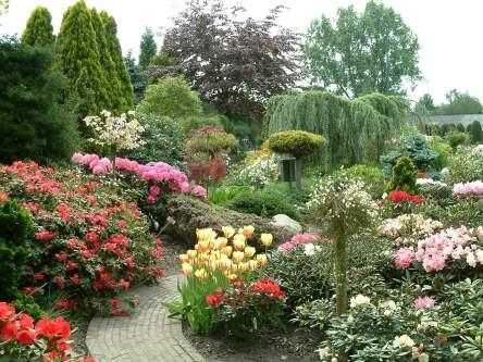 Tuin aanleggen maar straks geen zin in tuinieren huislijn blog - Huis in de tuin ...