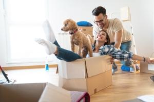 huisdieren en verhuizen